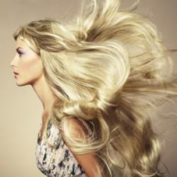 A beautiful head of hair